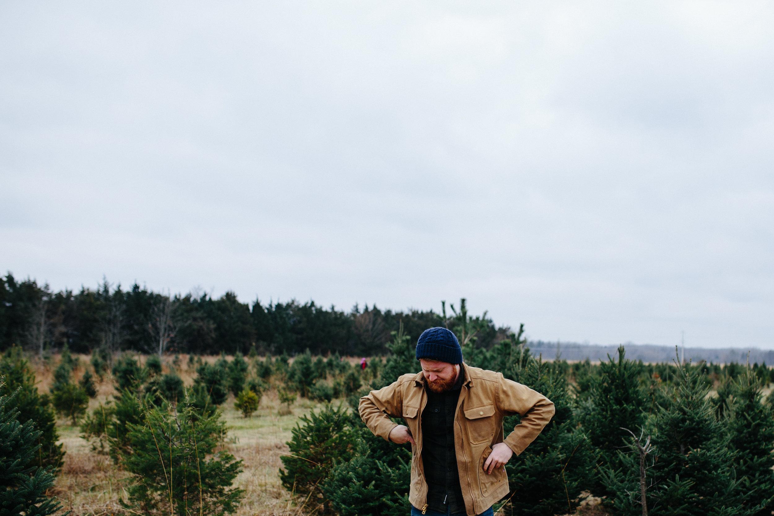 xmas tree-28.jpg