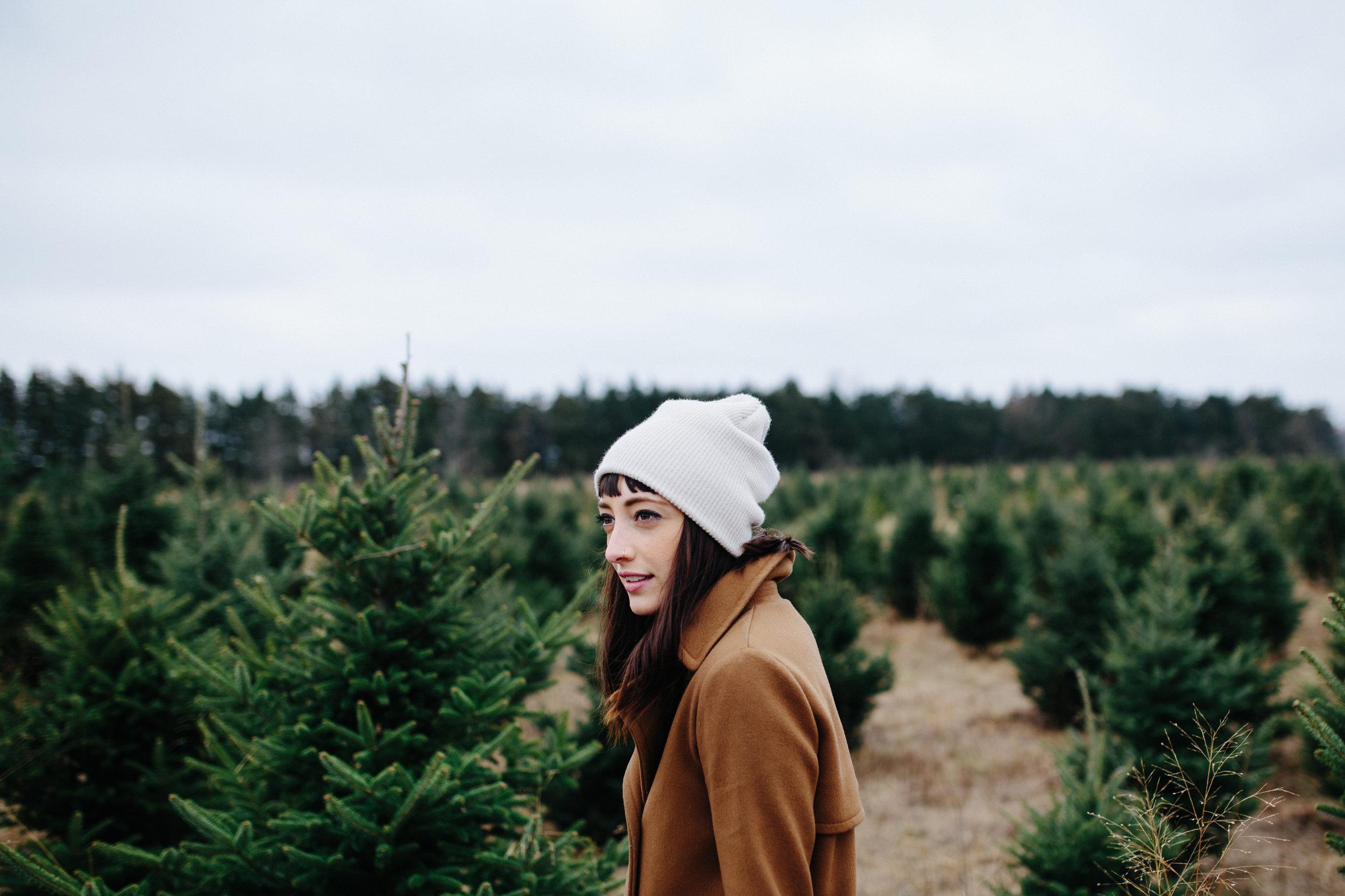 xmas tree-34.jpg