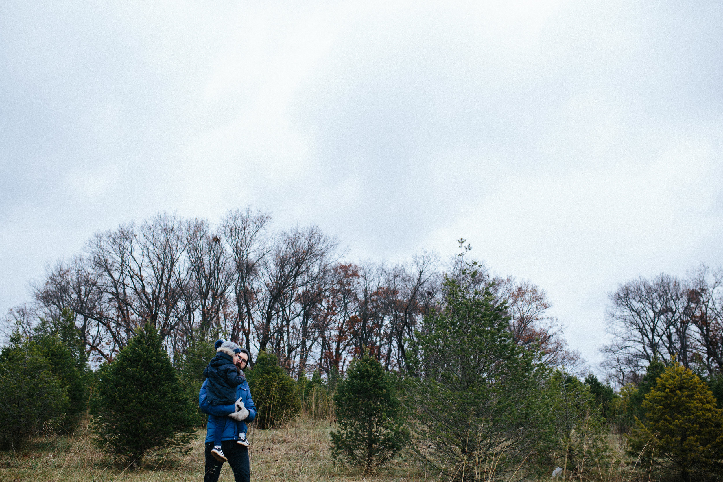 tree pics-2.jpg