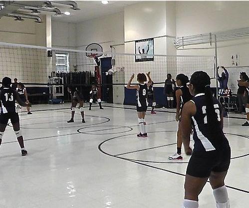 chamberlain volleyball team.png