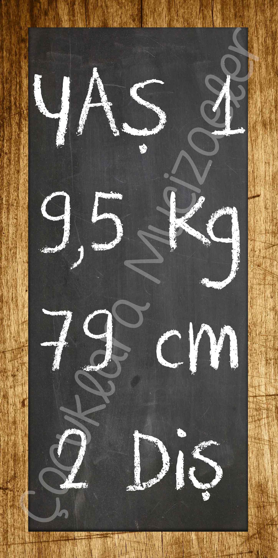 Ürün Kodu: KP18
