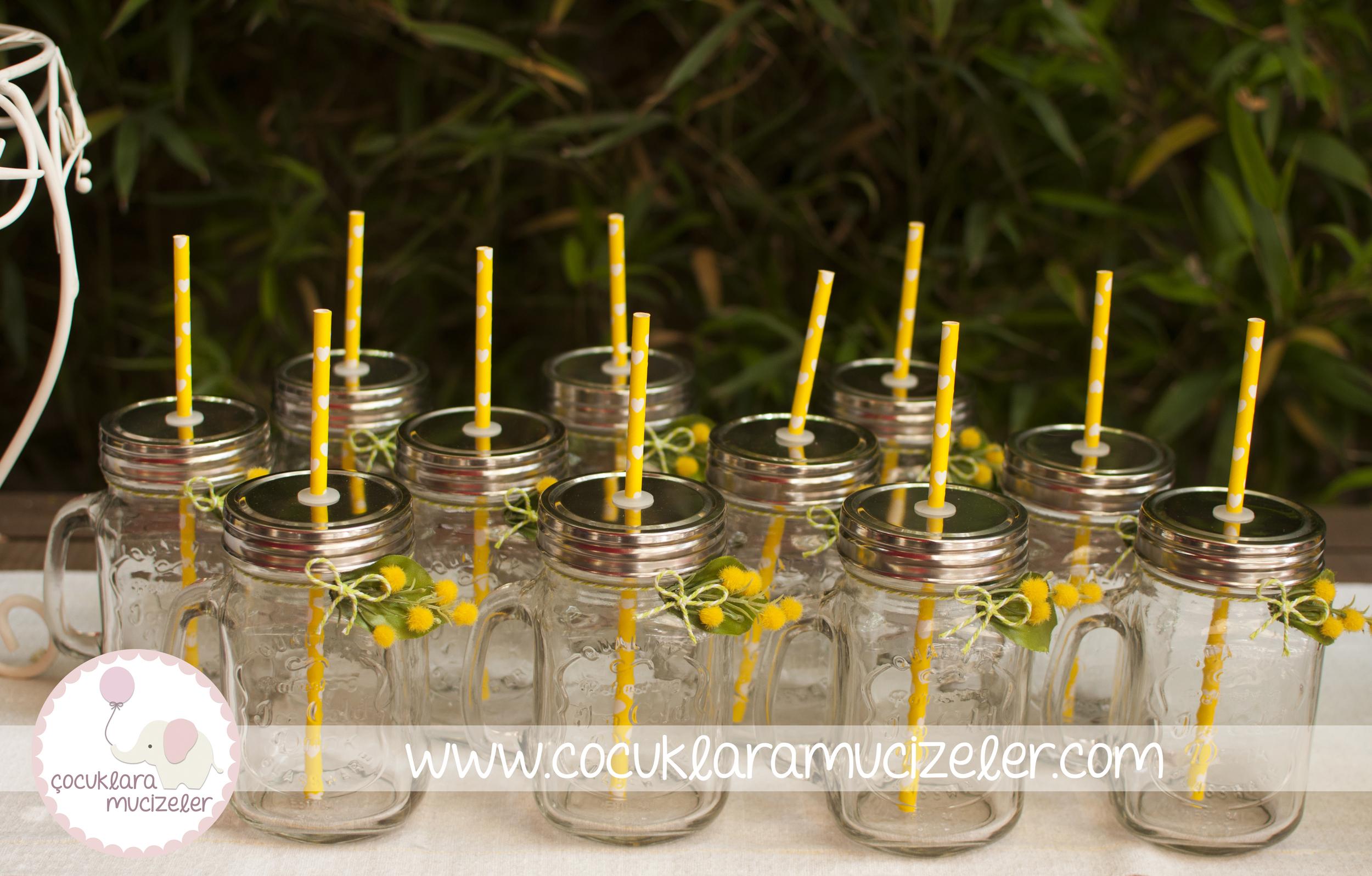 Mimoza Süslü Limonata Kavanozları