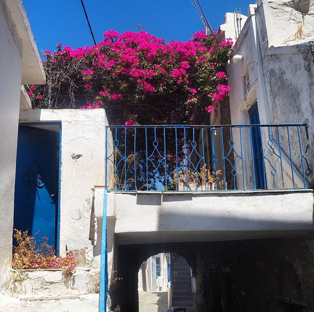 "Number one thing to do when the Meltemi in Tinos is too strong? Take a tour of the villages. This one is Agapi. It's beautiful, dripping in bougainvillea and its name means ""love"" in Greek. Beats being blown away by the sandy breeze on the beach..."