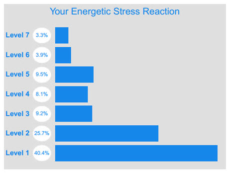 Energetic Stress Reaction - Under Stressful Times