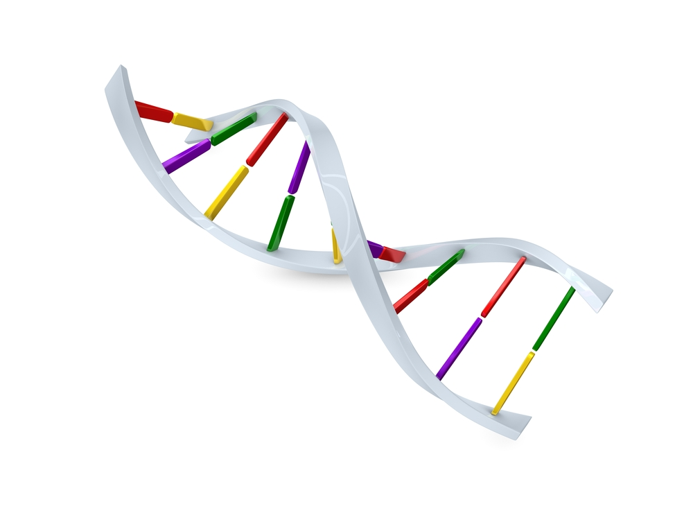 DNS Doppelhelix-Strang