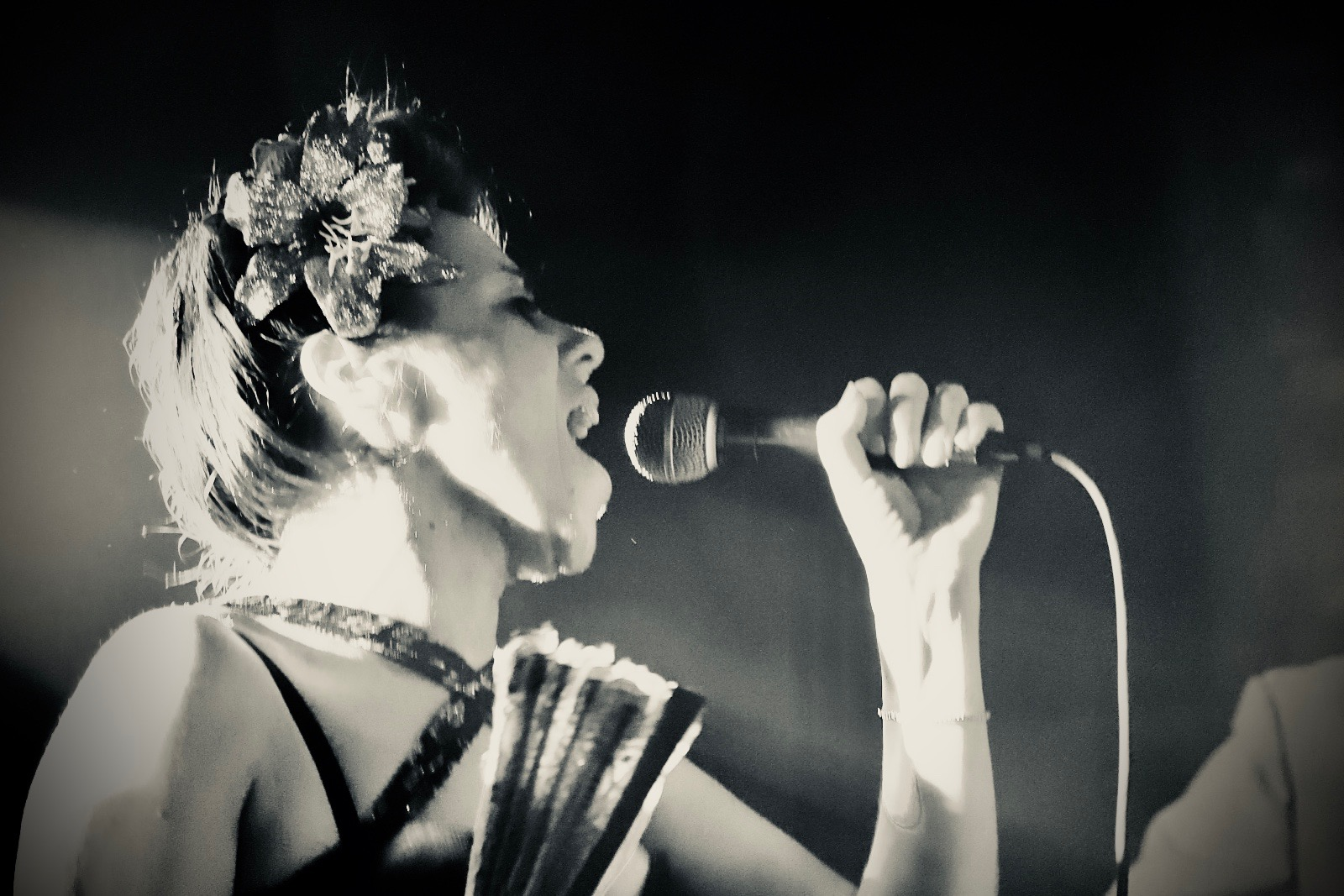 SISTER SUZIE - RHYTHM & BLUES / ROCK N ROLLDOOR 7PM / MUSIC 8.30PM£10 / £9 / £5 (BK)EMAIL TO RESERVE