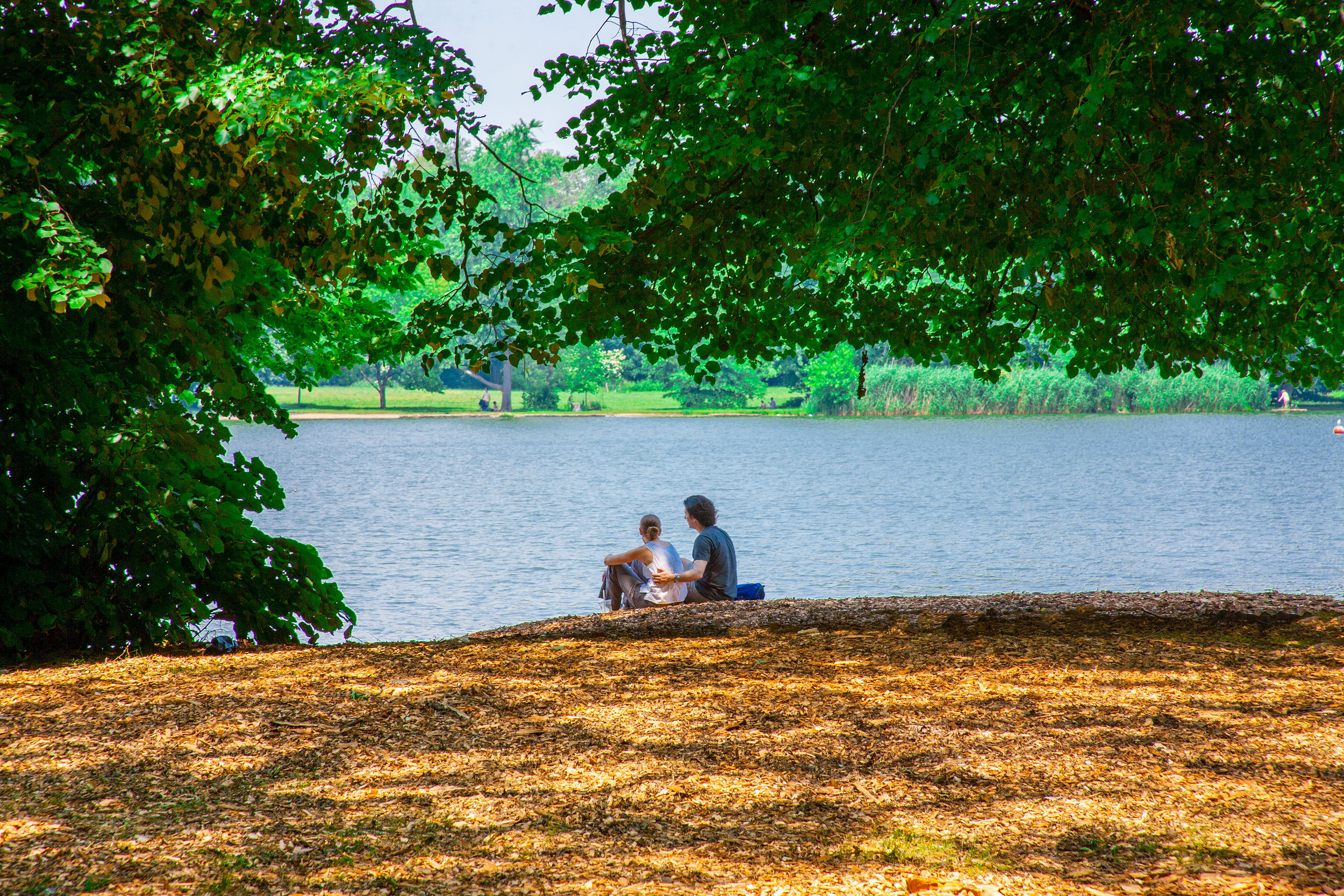 Lets_See_NY_Propsect_Park_Summer-6.jpg