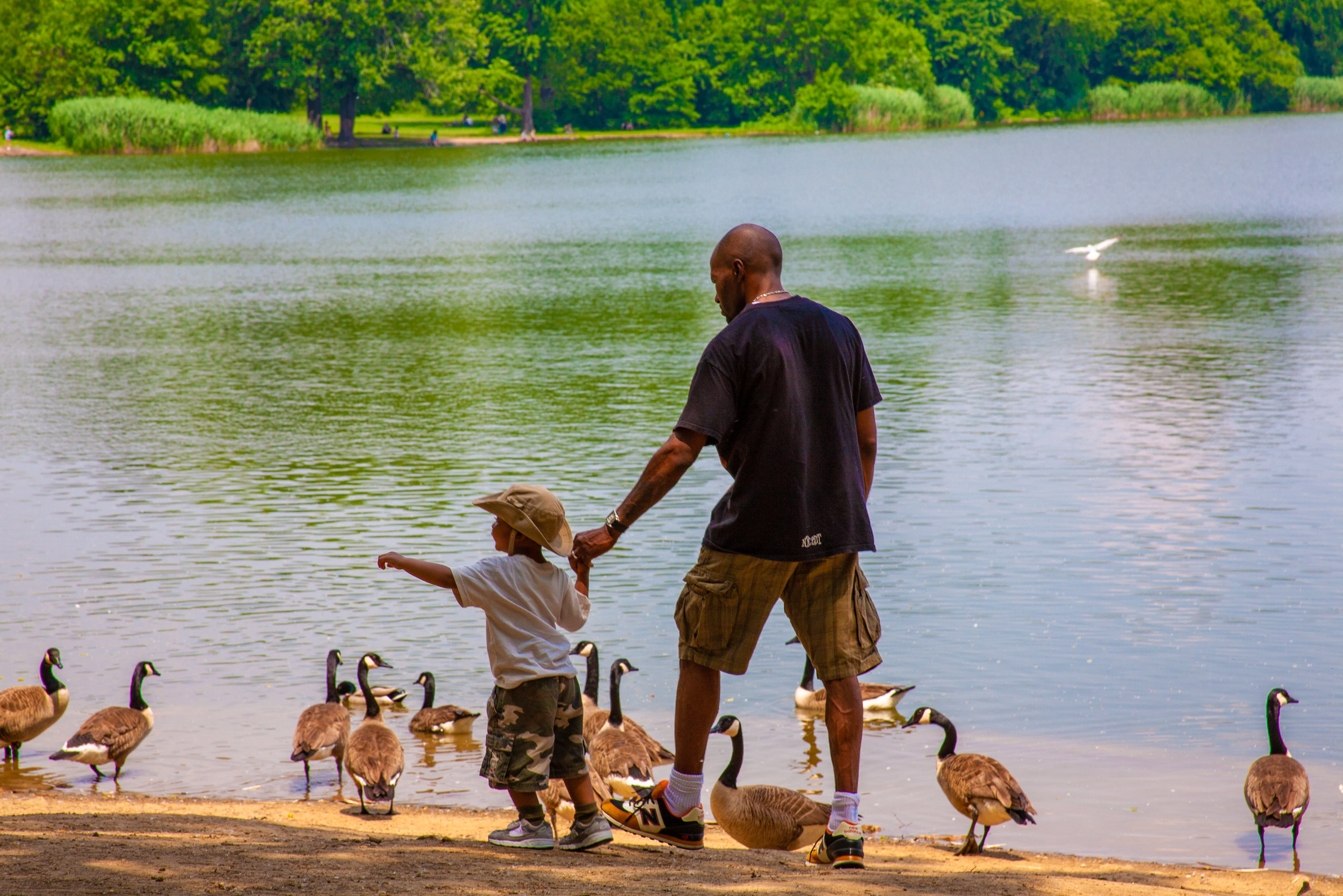 Lets_See_NY_Propsect_Park_Summer-14.jpg