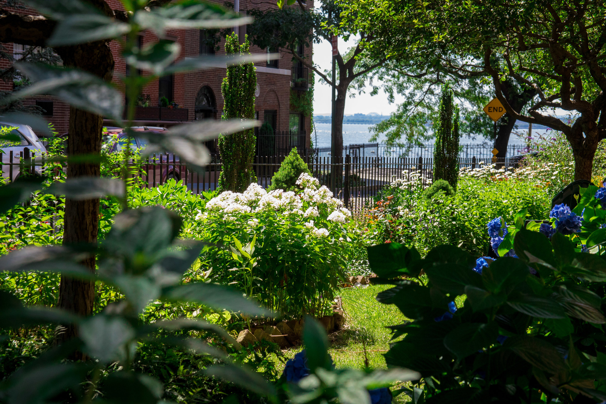 LSNY_Brooklyn-Heights-39.jpg