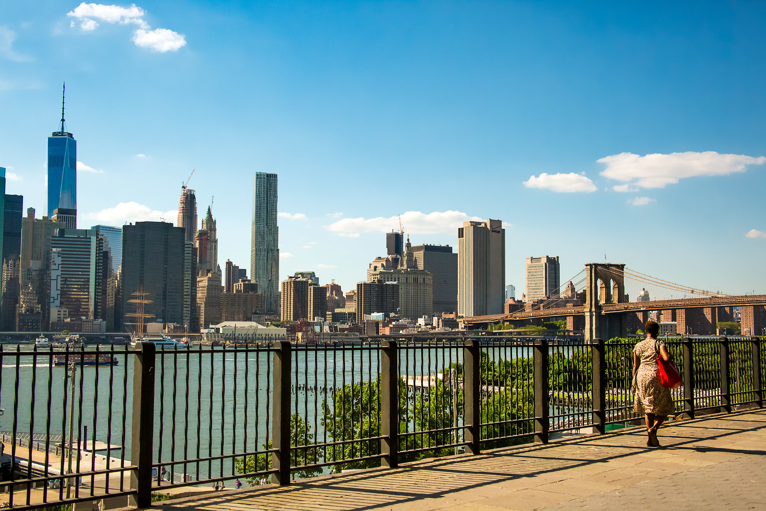 LSNY_Brooklyn_Bridge_Park-6.jpg