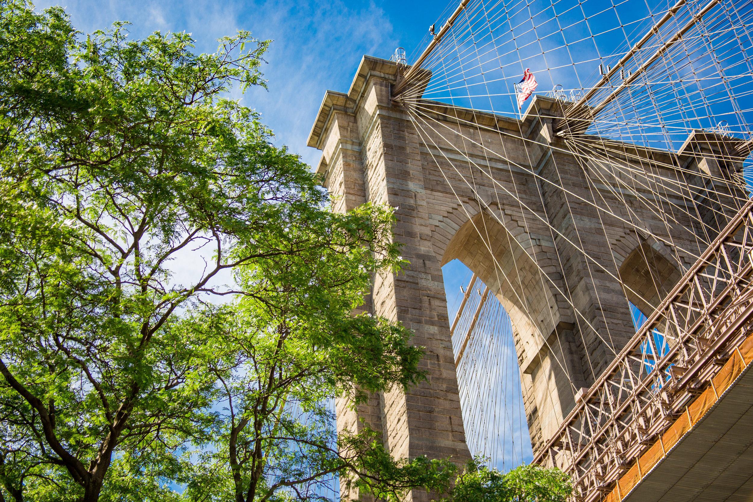 LSNY_Brooklyn_Bridge_Park-52.jpg