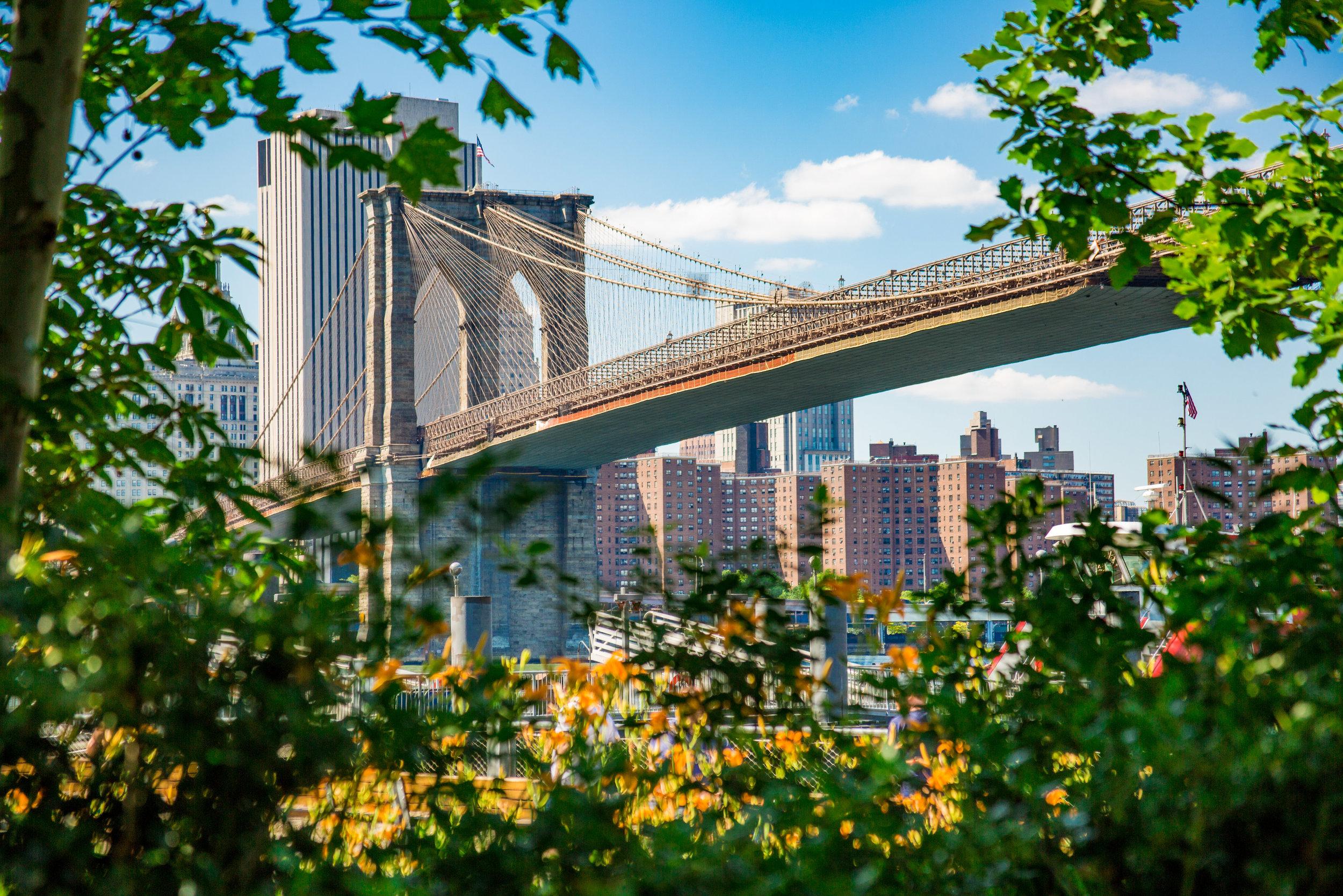 LSNY_Brooklyn_Bridge_Park-62.jpg