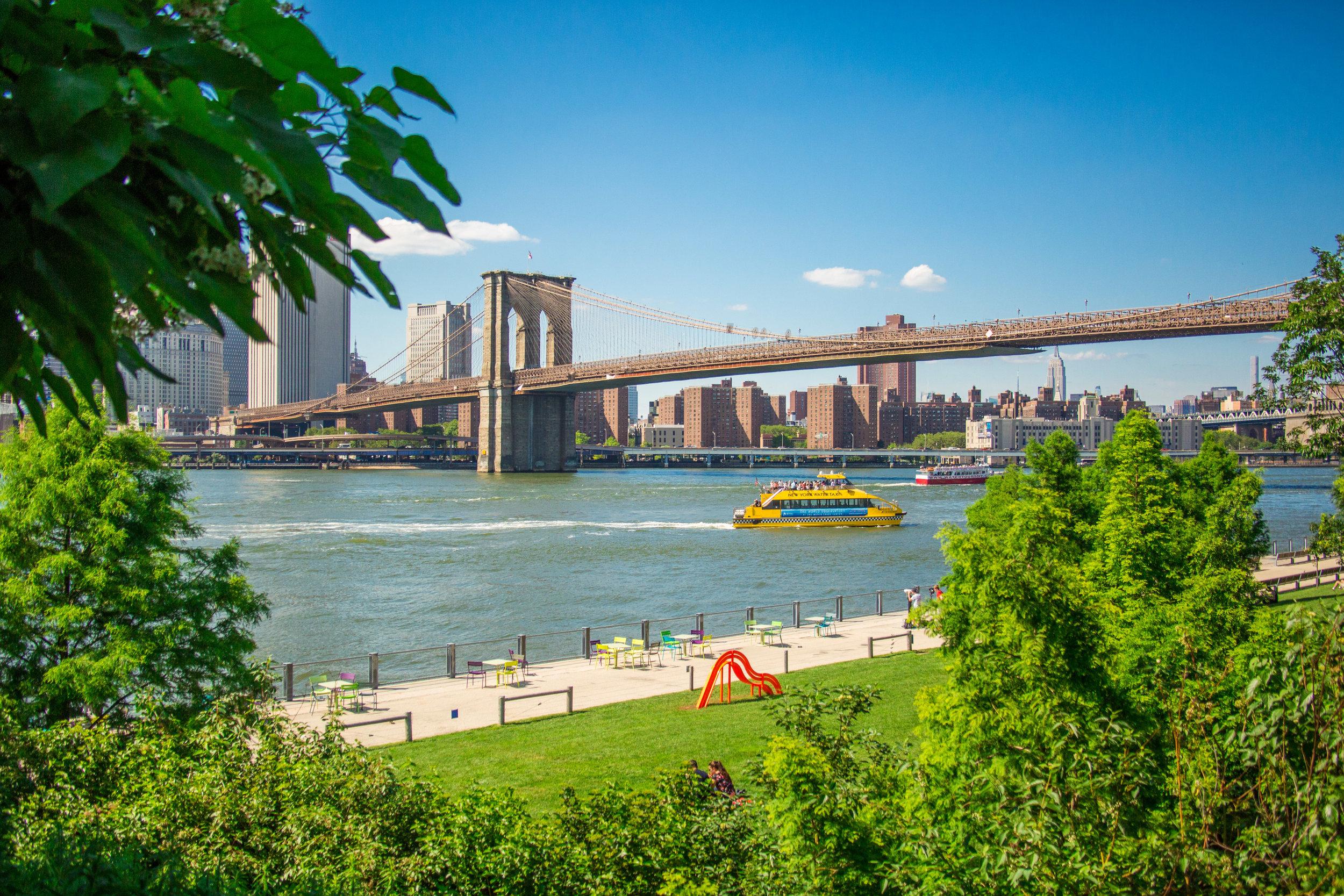 LSNY_Brooklyn_Bridge_Park-74.jpg