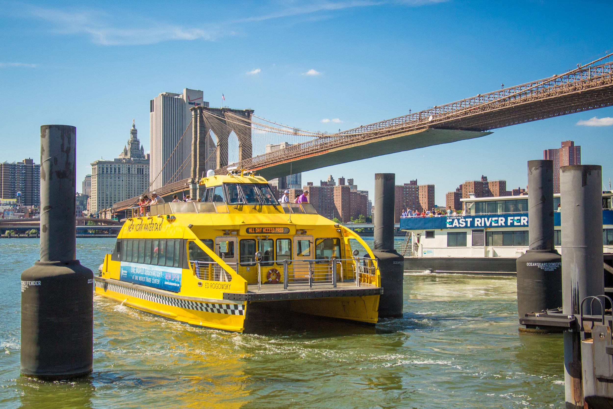 LSNY_Brooklyn_Bridge_Park-76.jpg
