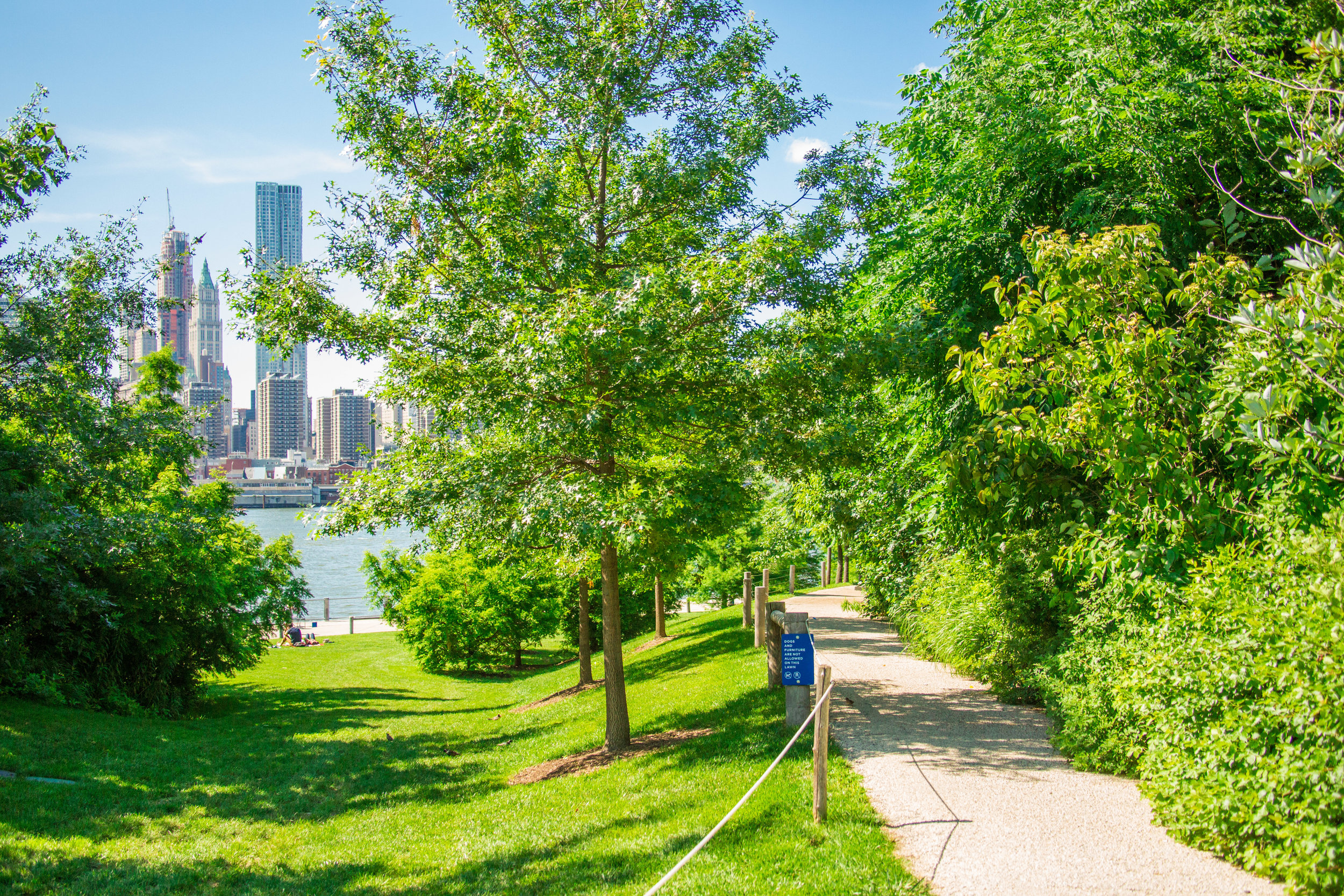 LSNY_Brooklyn_Bridge_Park-75.jpg