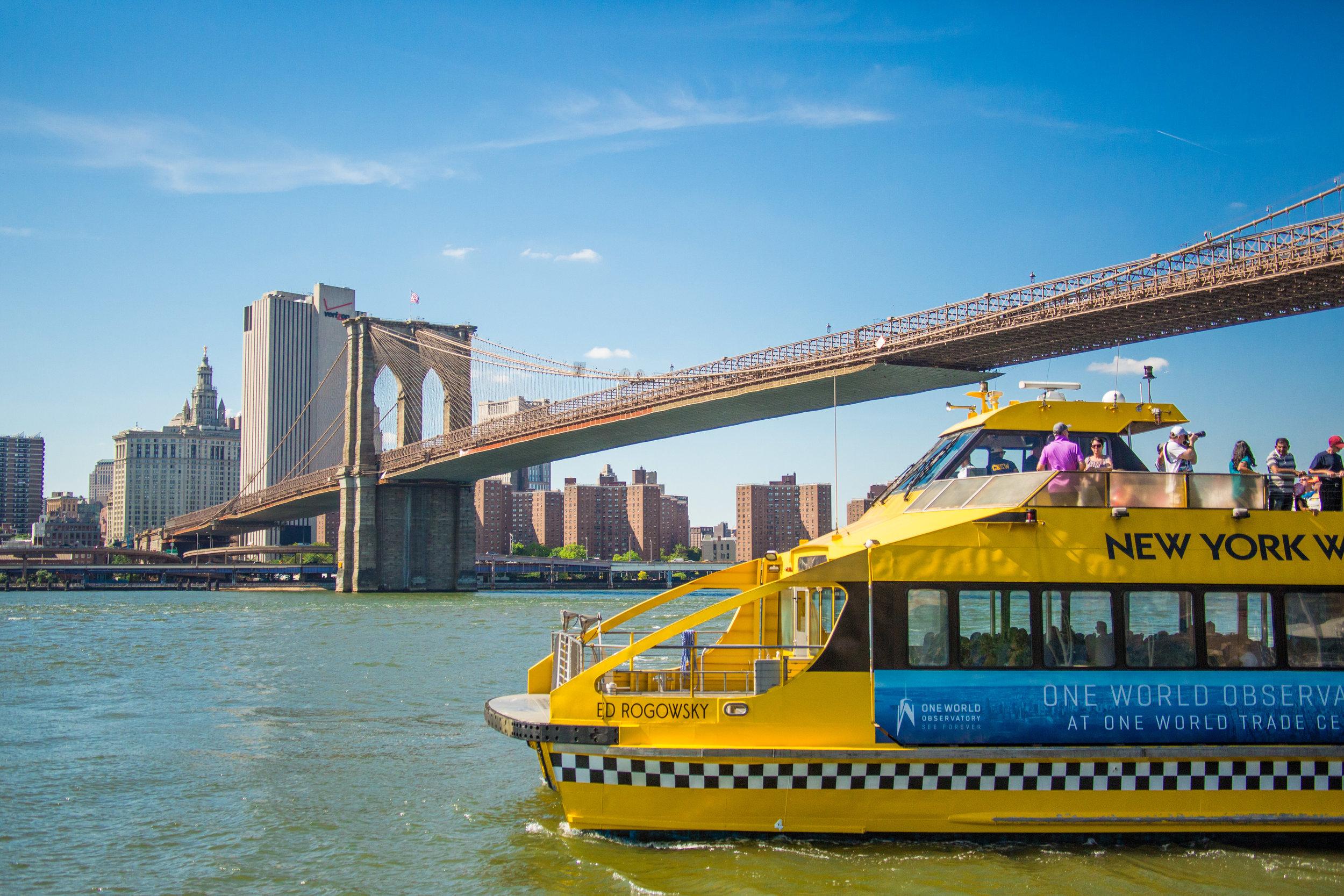 LSNY_Brooklyn_Bridge_Park-77.jpg