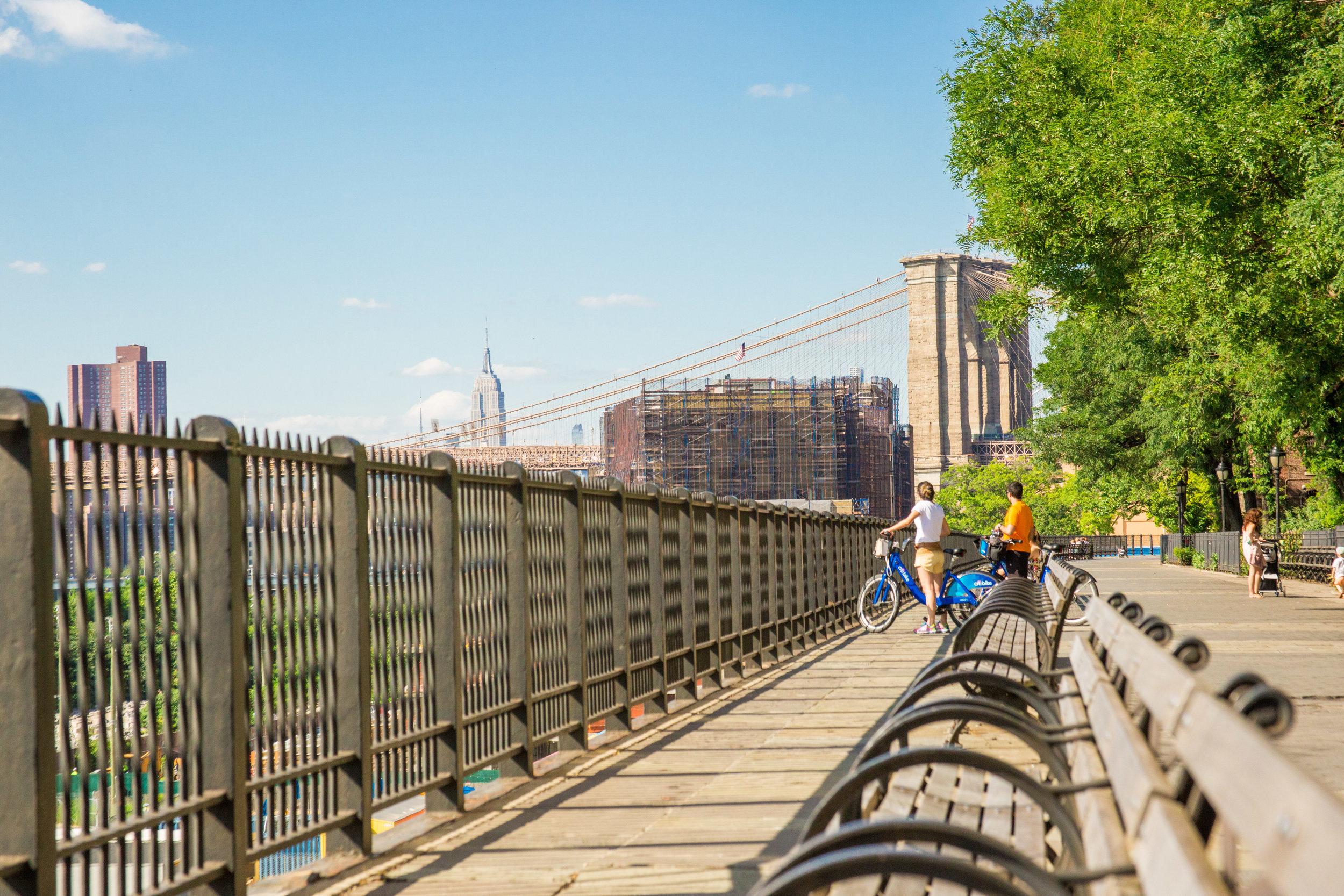 LSNY_Brooklyn_Bridge_Park-88.jpg