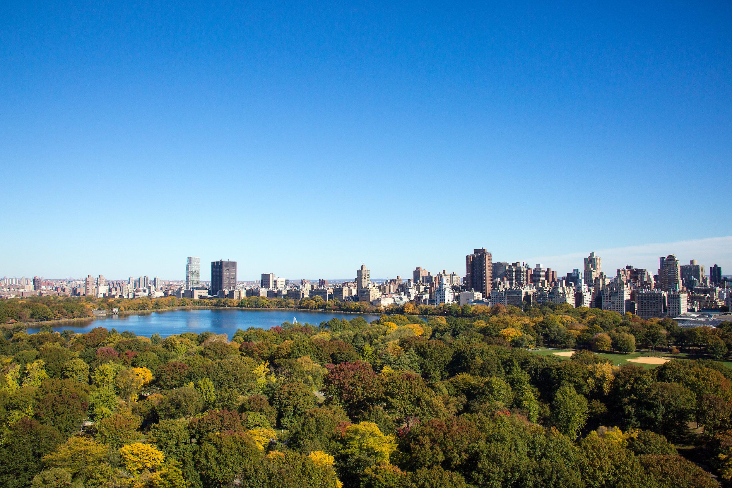 LSNY_Central_Park_Views-1.jpg