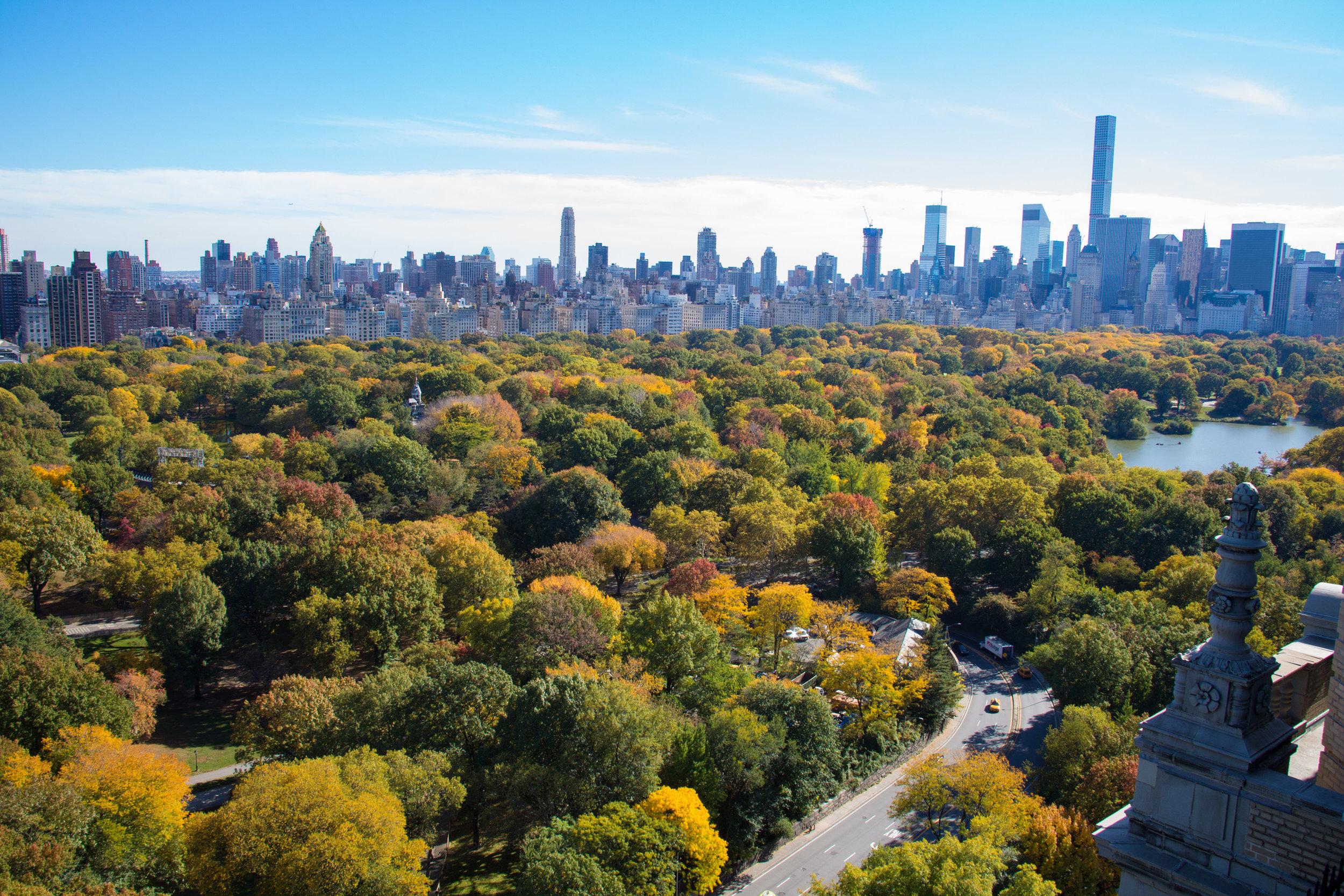 LSNY_Central_Park_Views-4.jpg