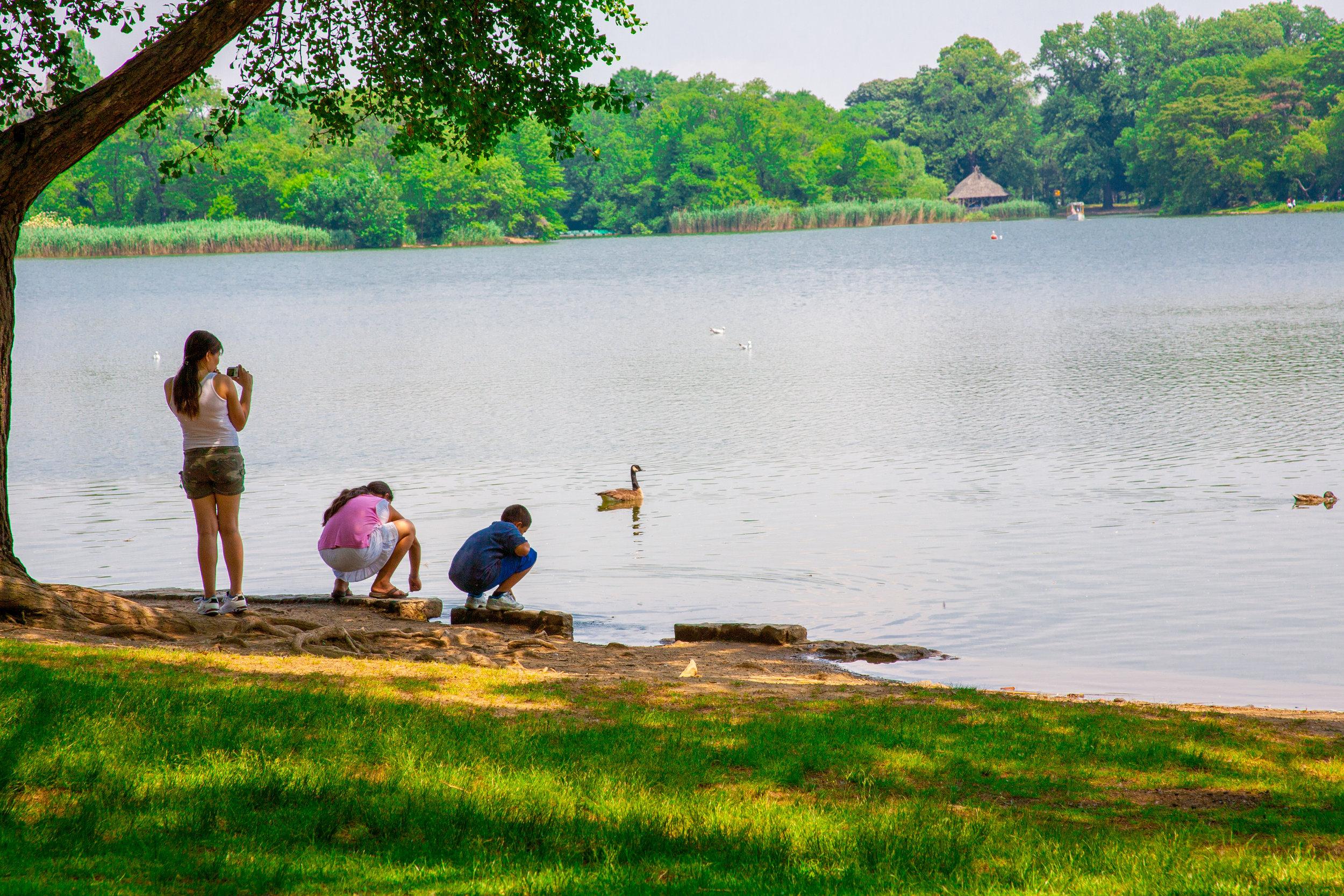 Prospect Summer Park -