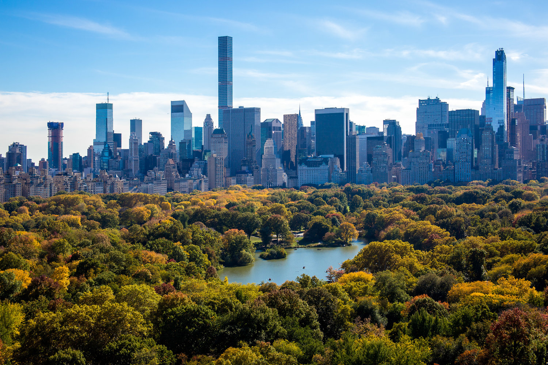 Central Park Views -