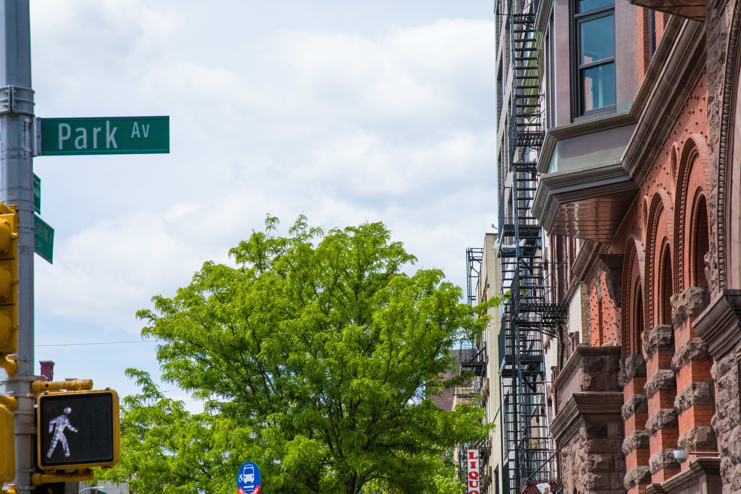 LSNY_Harlem-9.jpg