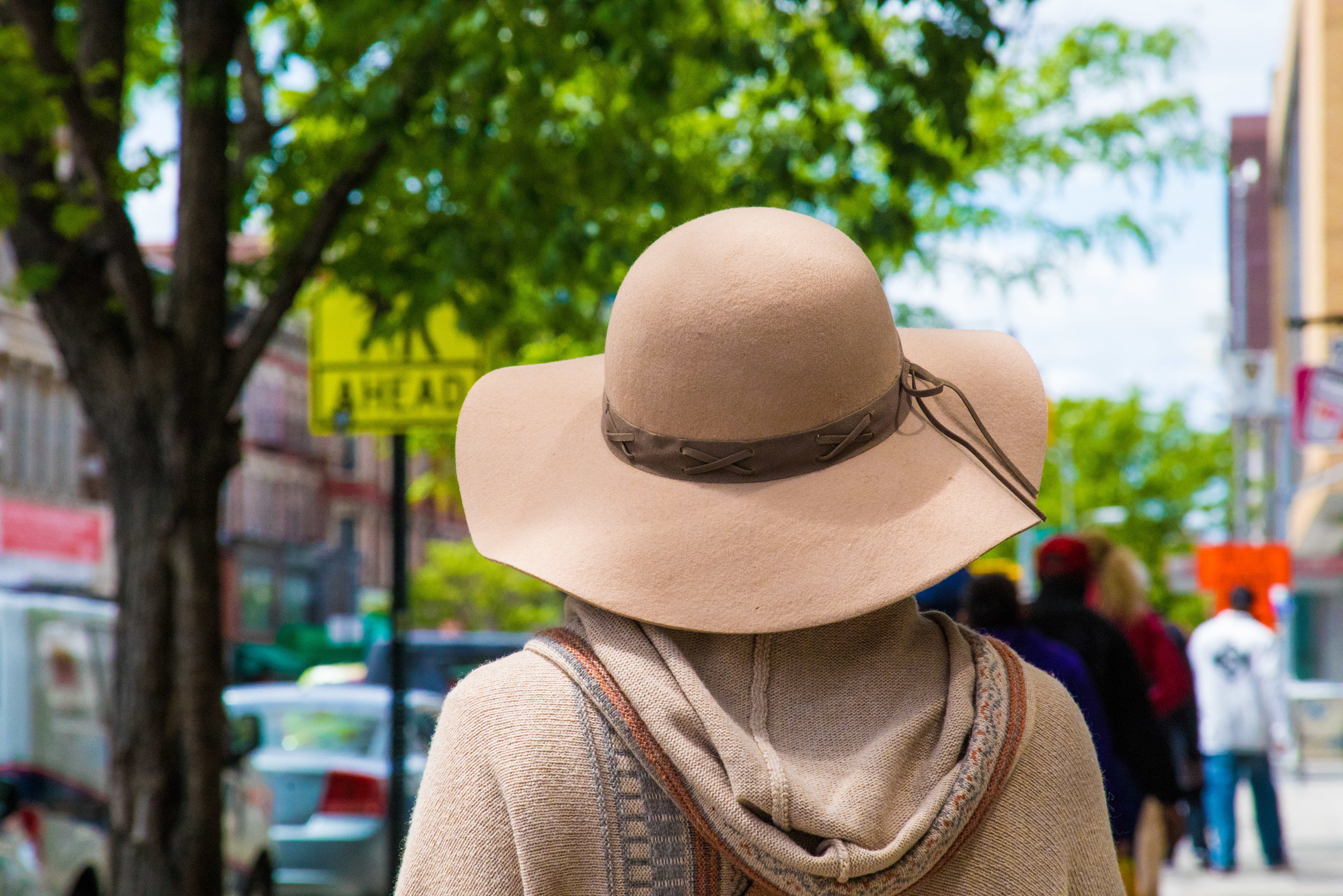 LSNY_Harlem-10.jpg