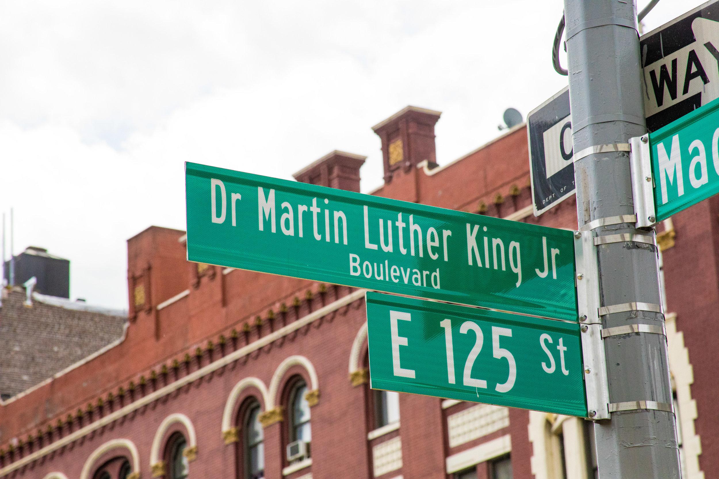 LSNY_Harlem-11.jpg