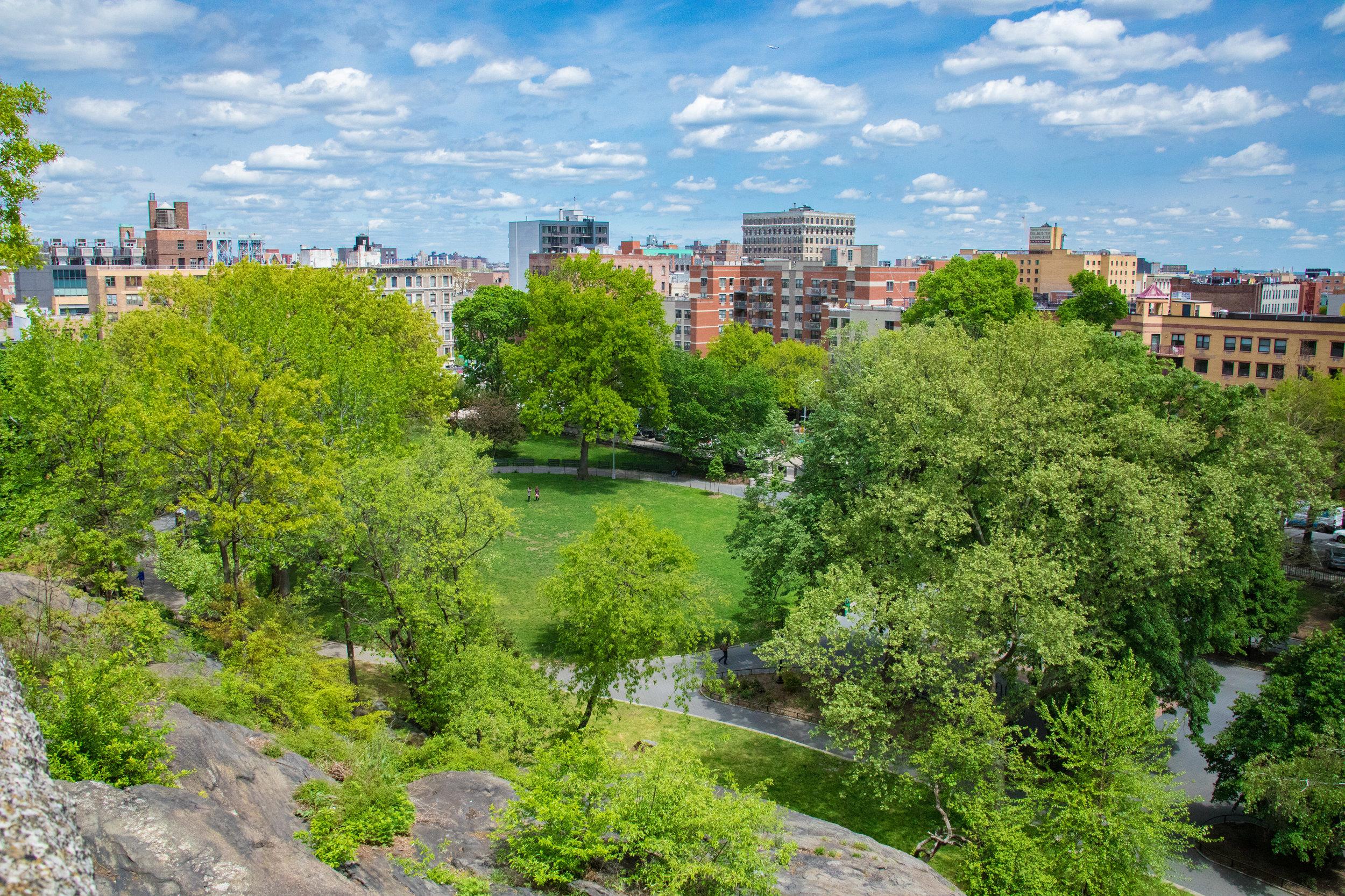 LSNY_Harlem-17.jpg