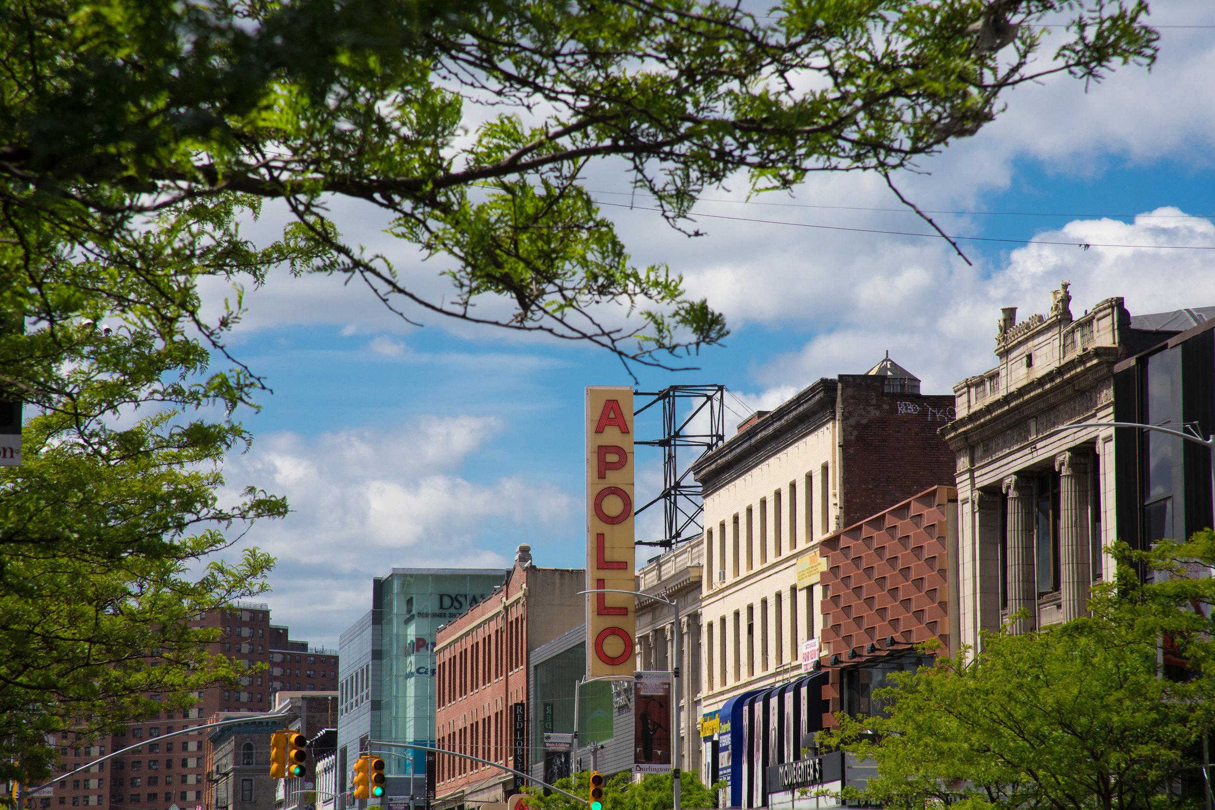 LSNY_Harlem-29.jpg