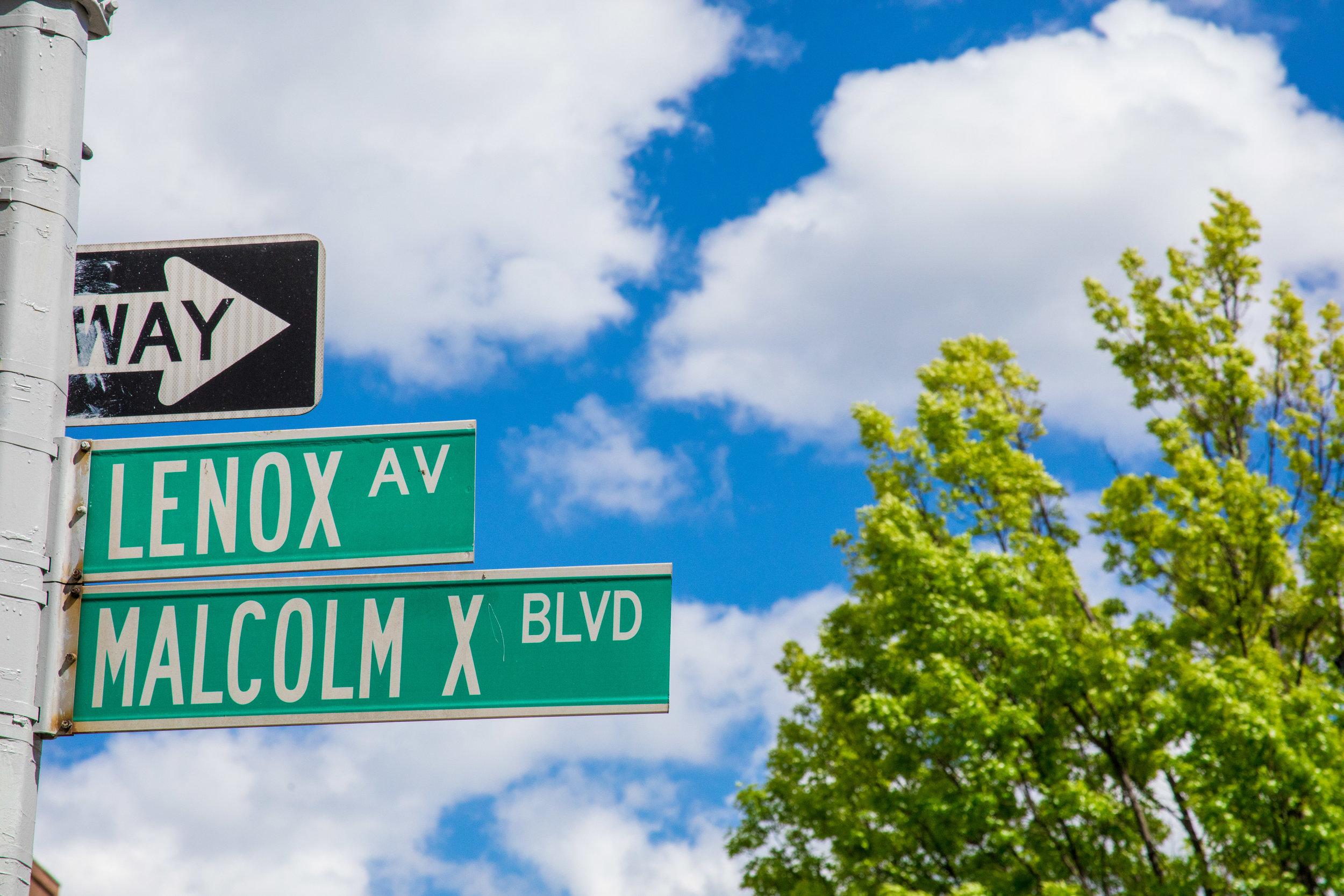 LSNY_Harlem-66.jpg