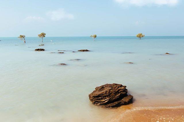 📍 Persian Gulf 🔴 Harra jungles 🔴