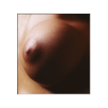 Mick Rock - Breast  Kymara Artistic Management No use authorized without permission.   Contact  gallery for availability.