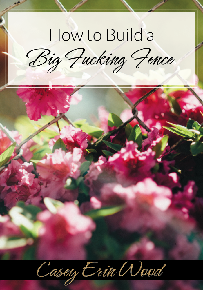 How to Build a Big Fucking Fence:How to manage your energy and build healthy boundaries — for quiet creatives, introvert entrepreneurs, writers and change-making girl bosses.