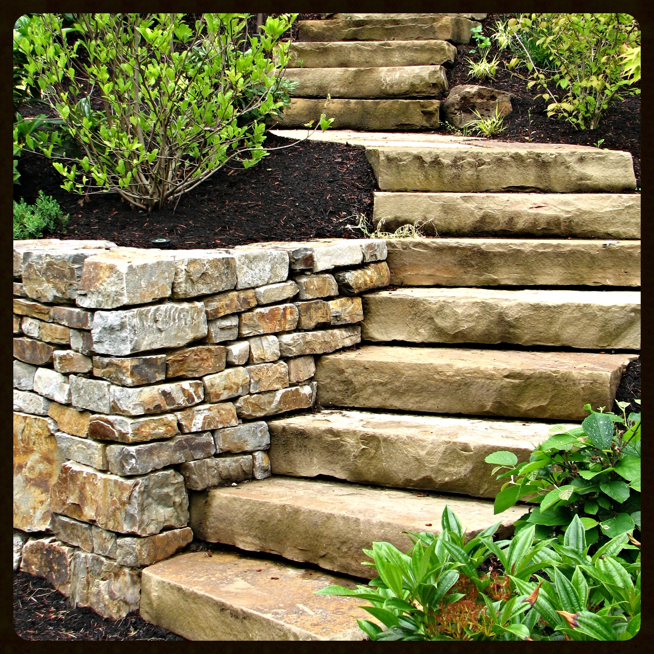barnes_steps1.jpg