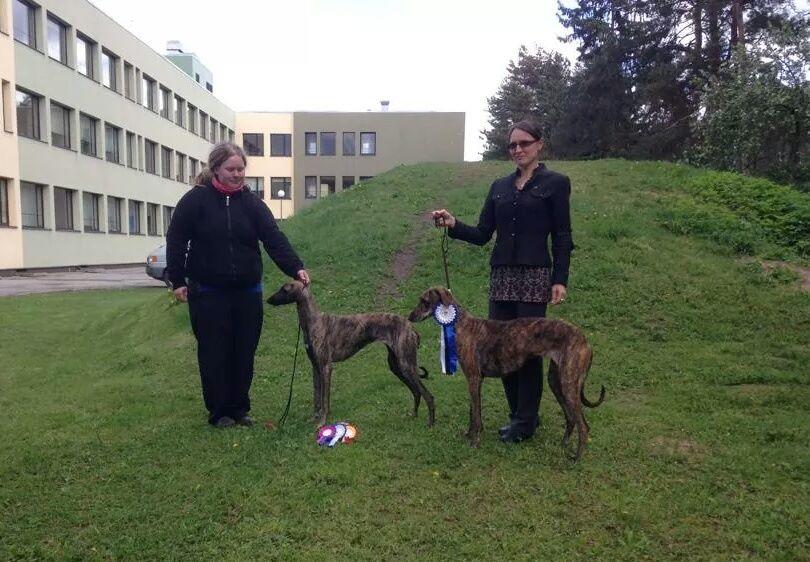 Kulliki Kristianson & dogs Delandros Archie Elliot, Perfect Stranger No Problem, Tazkia Bohemia Genao / Tallinn, Estonia