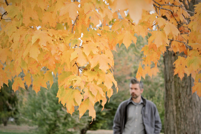 tim fall tree_1500.jpg