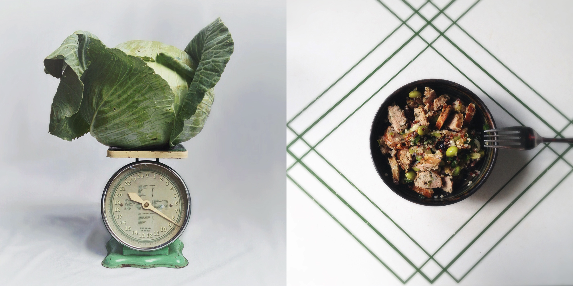 cabbage head and soybean quinoa diptych.jpg