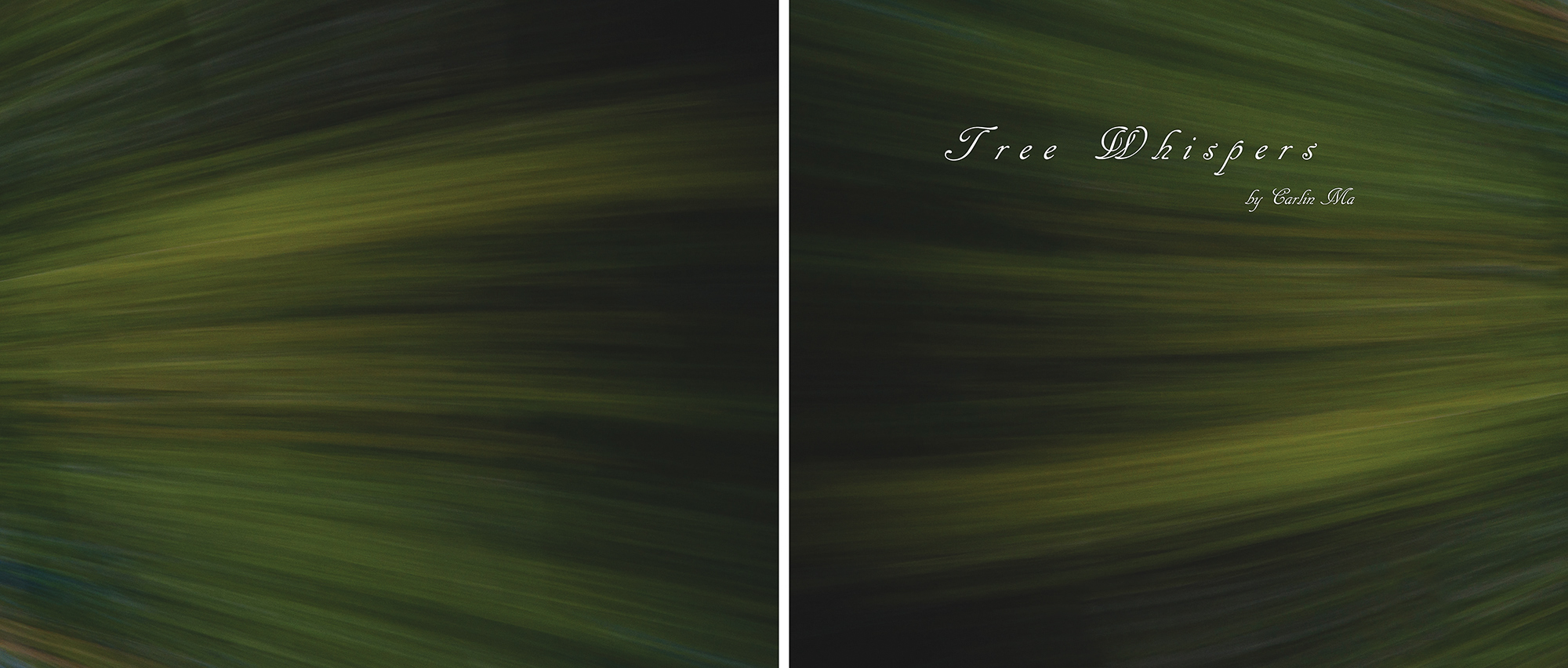 Carlin - Tree Whispers v2012_Page_25.jpg