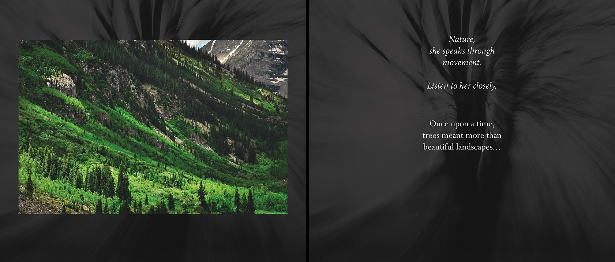 Carlin - Tree Whispers v2012_Page_03-4.jpg