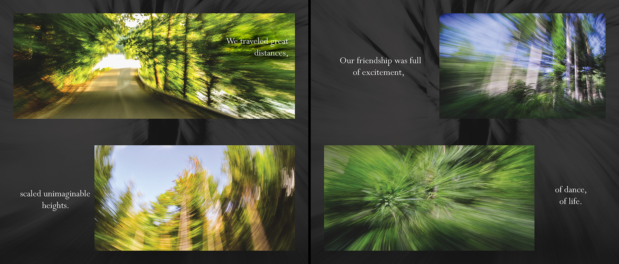 Carlin - Tree Whispers v2012_Page_07-8.jpg