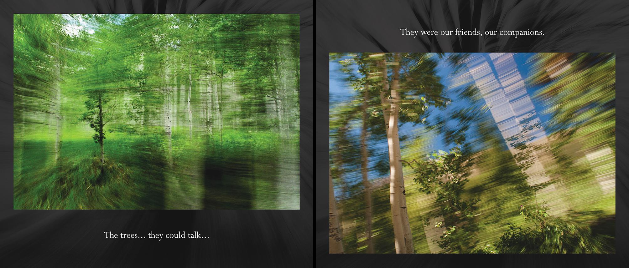 Carlin - Tree Whispers v2012_Page_05-6.jpg