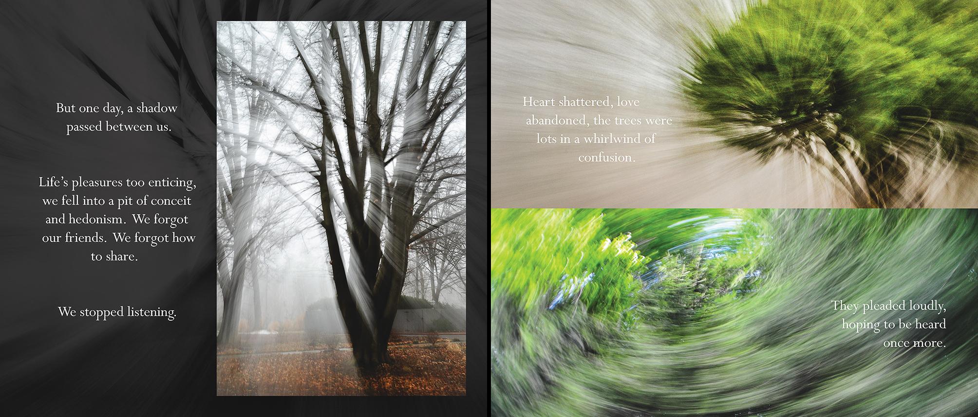 Carlin - Tree Whispers v2012_Page_11-12.jpg