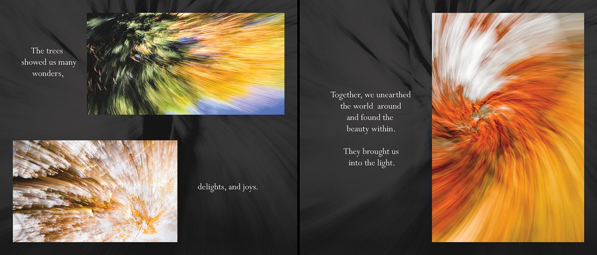 Carlin - Tree Whispers v2012_Page_09-10.jpg