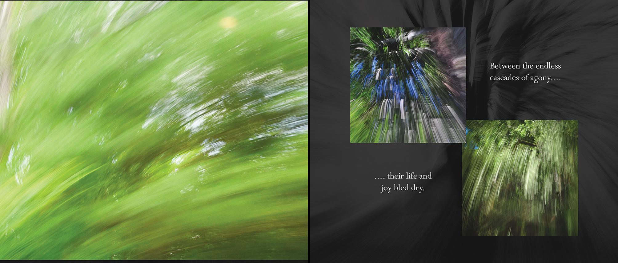 Carlin - Tree Whispers v2012_Page_15-16.jpg