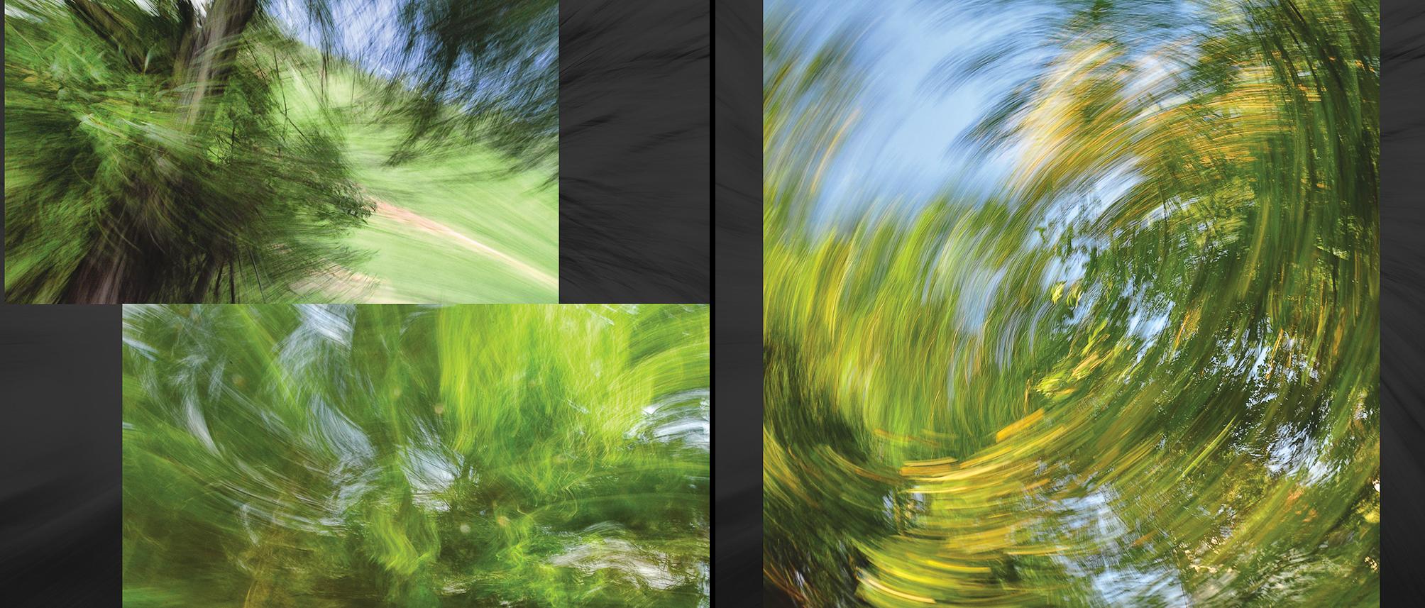 Carlin - Tree Whispers v2012_Page_13-14.jpg