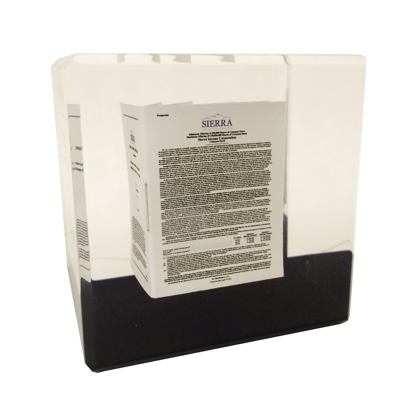 Lucite Cube (Customized)