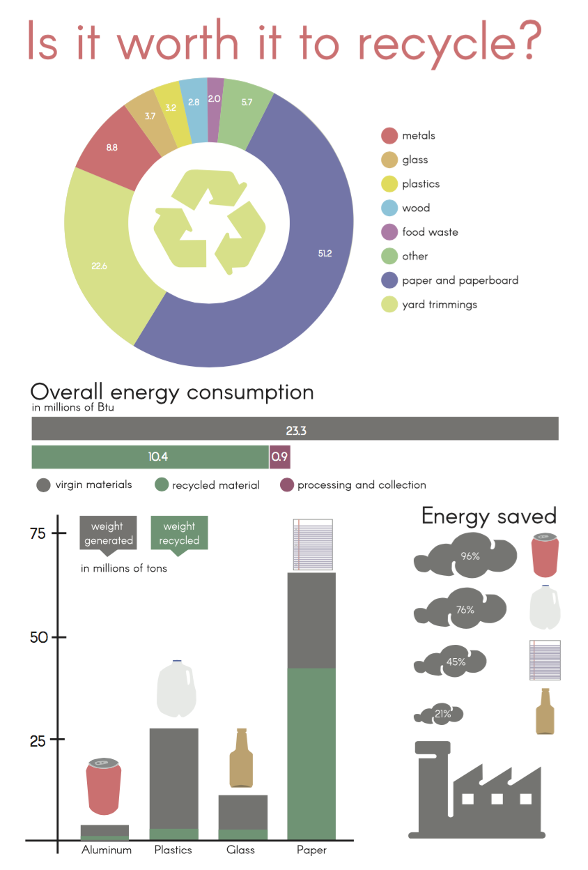 Student Infographic Project
