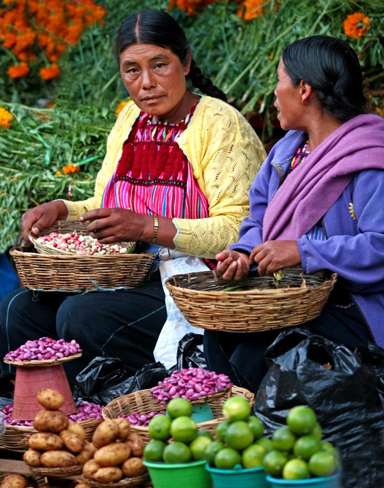 Bean Counters, Chiapas