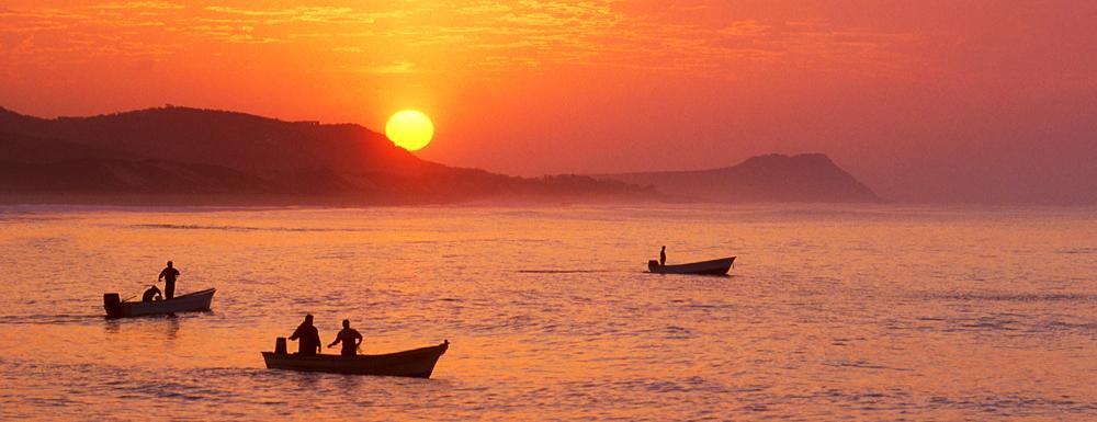 Sunsrise Pangas, La Playita, Los Cabos